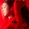 ※「BOA - ONE SHOT, TWO SHOT」